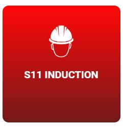 s11-induction